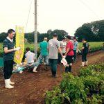 蕎麦の刈り入れを体験してきました!
