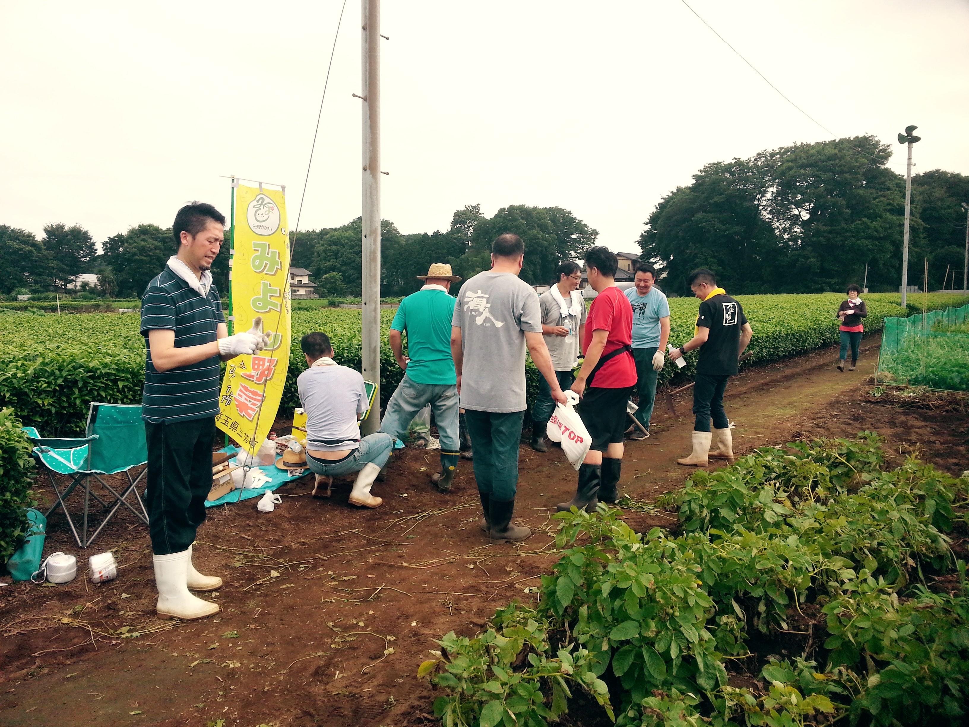 蕎麦刈り2016