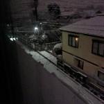 雪だ~~~~~!!!!